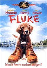 Fluke - Film (1995) streaming VF gratuit complet