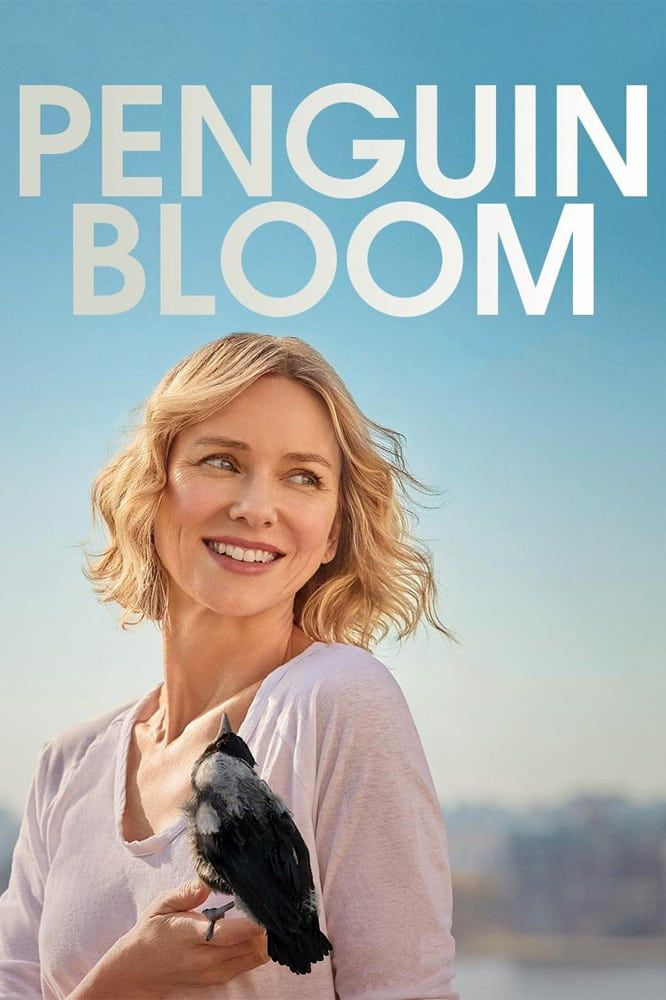 Voir Film Penguin Bloom - Film (2021) streaming VF gratuit complet